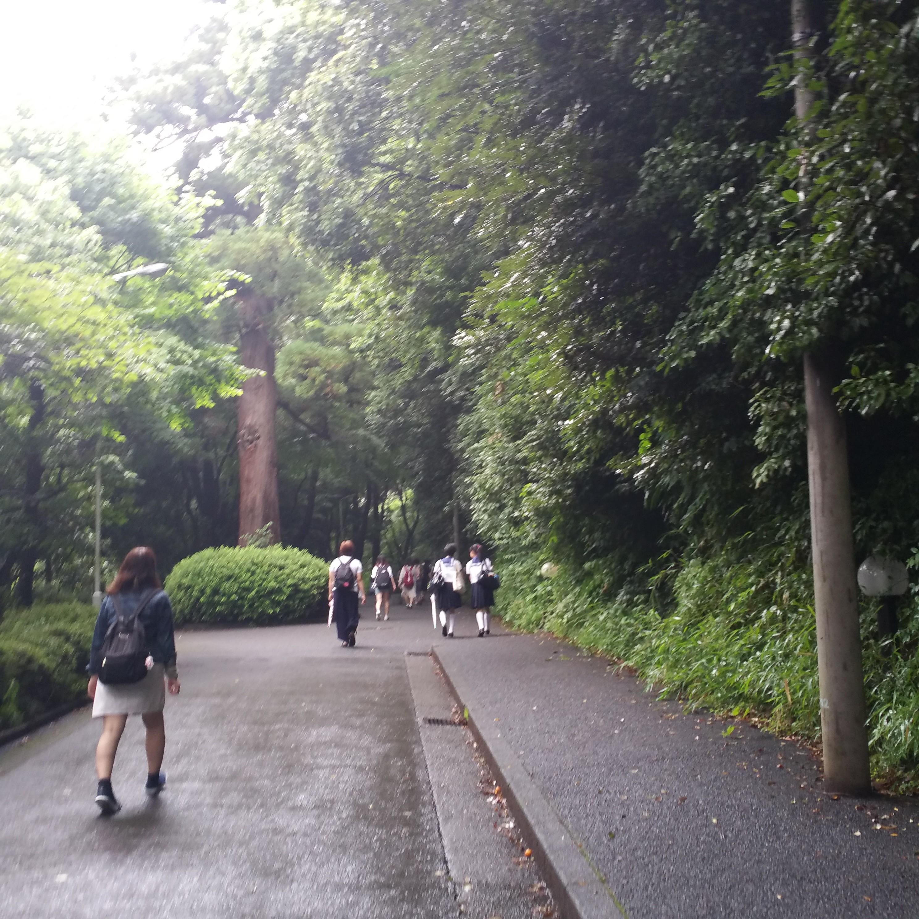 日本 女子 大学 附属 中学校